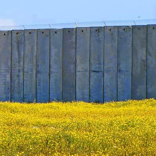 Frammenti (di Palestina)