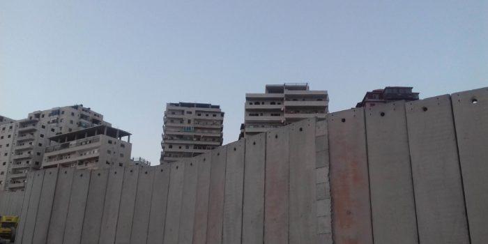 Diario del collettivo dalla Palestina