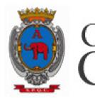 """I Regolamenti della """"Consulta per la Pace"""" e della """"Consulta dei Migranti"""" approvati dal Consiglio Comunale di Catania"""