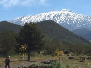 Parco dell'Etna, versante nord-ovest