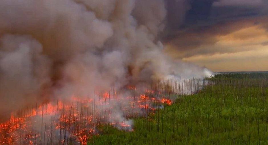 """AMAZZONIA: """"BASTA VIOLENZE CONTRO GLI INDIGENI""""                                 A colloquio con la relatrice speciale dell'Onu sui diritti delle popolazioni indigene. di Anna Moccia"""