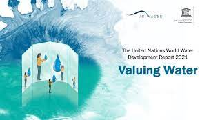 Il valore dell'acqua